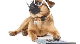 Аутсорсинг бухгалтерского учета: как это происходит и почему ваш штатный бухгалтер никогда не будет так же хорош?