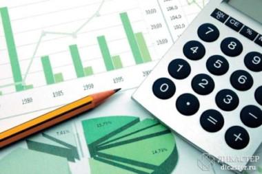 Новая форма отчетности для малых предприятий — ТЗВ-МП за 2016 год. Описание, инструкция